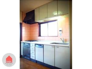 Suminoe-ku,Osaka-shi,Osaka,Nankai main line,4 Bedrooms Bedrooms,1 BathroomBathrooms,Apartment,1252